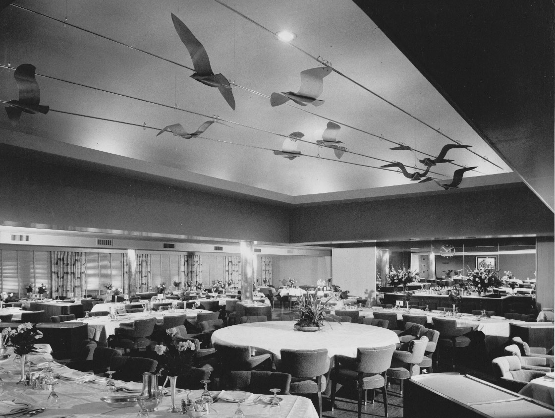 Gulls as they looked in the dining room of the S.S. Brazil