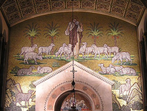 Rows of sheep at St. Aloysius